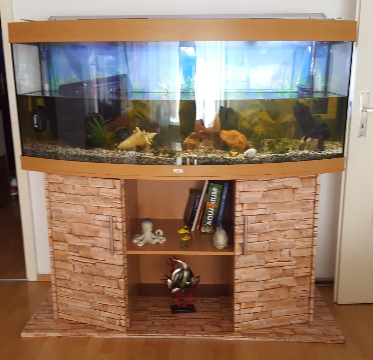 Komplett Neu ❤ 450l aquarium Kleinanzeigen kaufen & verkaufen bei DeineTierwelt ❤ XY36